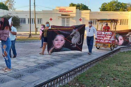CCE Yucatán lamenta que la senadora Verónica Camino aprobara la reforma eléctrica
