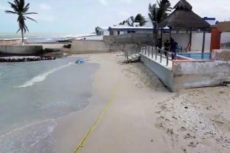 Recala cadáver en playa de Chuburná Puerto