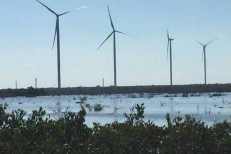 Gracias a la energía eólica, en Tizimín y Dzilam ya 'bajaron los recibos' de luz