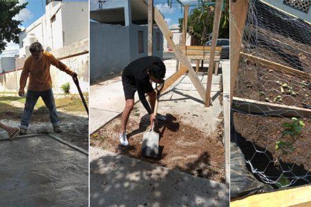 Convierten en huerto urbano un andador usado como basurero en Pensiones