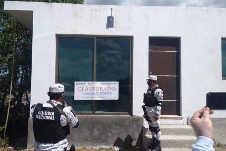 PROFEPA clausura predios invasores y frena devastación en la costa yucateca