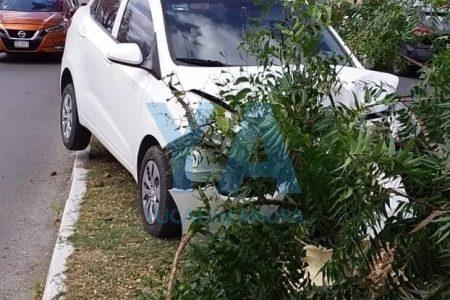 Conductora herida y árbol derribado, saldo de choque en la avenida Correa Rachó