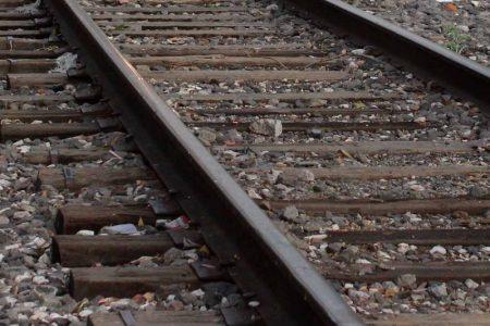 Ya se perciben en Yucatán las inversiones y empleos ligados al Tren Maya