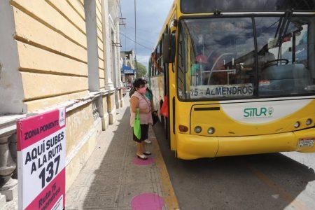 Usuarios reconocen que fue buena medida acercar los paraderos del transporte en Mérida