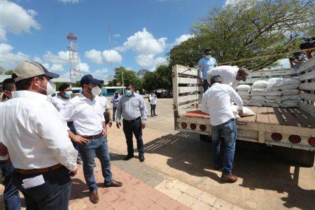 Distribuyen maíz del programa Seguridad Alimentaria para 224,000 familias