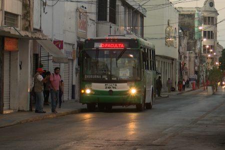 Acercan paraderos en el centro histórico de Mérida: usuarios satisfechos