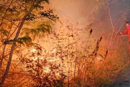 Intenso combate de incendios en el oriente, centro y sur de Yucatán