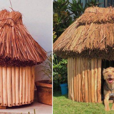 Casas mayas para mascotas, ideales para protegerlos del sol o lluvia