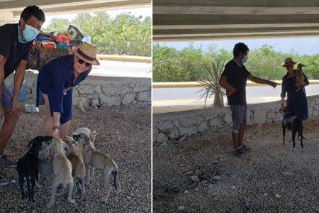 """Edgardo, el """"Salvaperros"""" que recorre México con su triciclo, llega a Yucatán"""