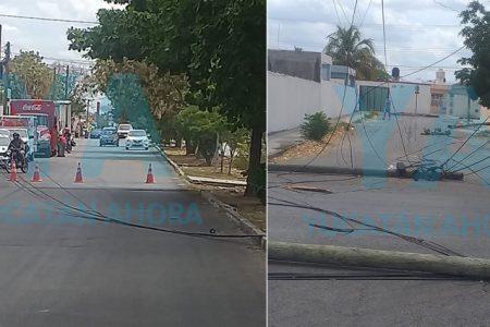 Camión de Bimbo derriba cinco postes en Polígono 108