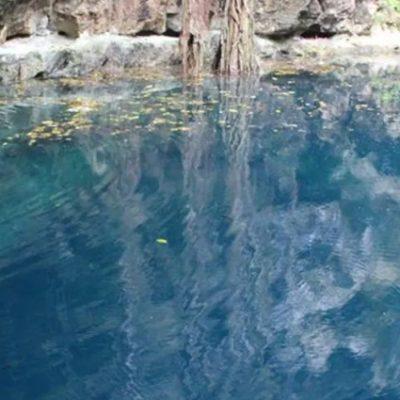Menor de Tixcacalcupul fallece ahogado en cenote de Quintana Roo