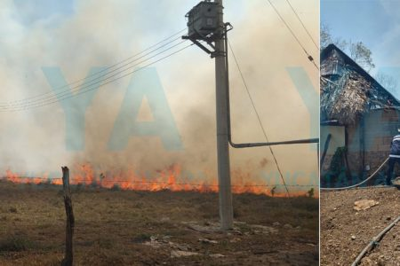 Fuerte incendio de maleza alcanza tres ranchos en Tizimín