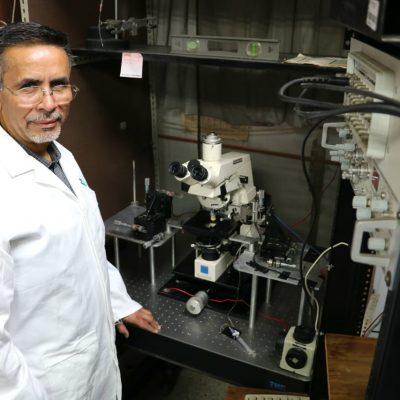 Contraproducente consumo prolongado de medicamentos contra Parkinson
