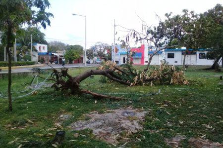 ¿Qué tan raras son la tormentas de primavera como la que afectó ayer en Yucatán?