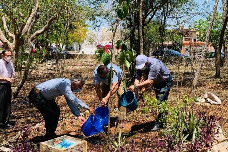 Pokemon Go echa una mano en la renovación del jardín botánico del Parque Recreativo Oriente