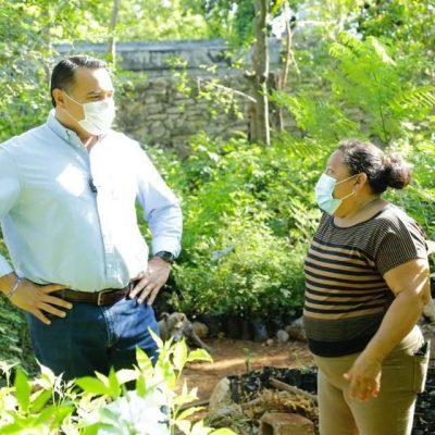 Más infraestructura verde para Mérida: Renán Barrera
