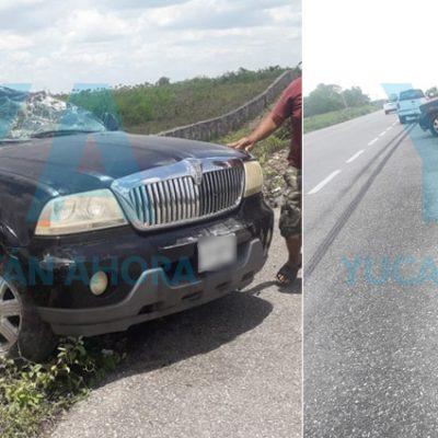 Conductor sufre aparatoso accidente en el tramo Sucilá-Buctzotz
