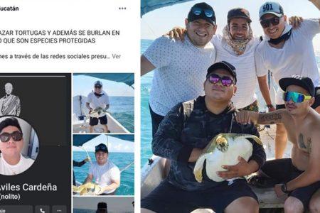 Jóvenes yucatecos desmienten ser cazadores de tortugas para comerlas