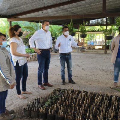 El alcalde Alejandro Ruz Castro visita el vivero municipal