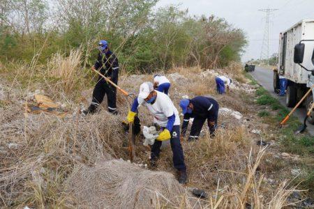 Servilimpia intensifica acciones para acabar con basureros clandestinos en la ciudad