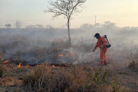 Procivy mantiene intensa actividad contra incendios y reitera llamado a la prevención