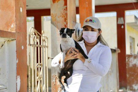 Urgente procurar el cuidado pleno de nuestros animales: Pili Santos