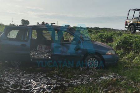 Abandonan una camioneta cargada con sardinas tras accidente