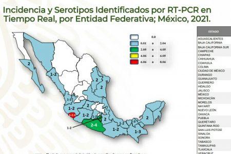 Infectados de dengue de la Península son del sereotipo 02