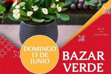 Realizarán Bazar Verde este domingo 13 de junio, en Paseo 60