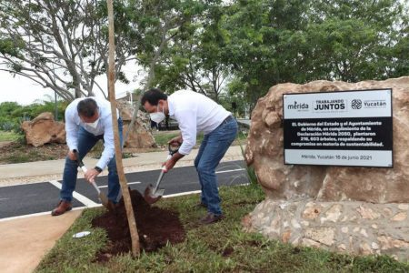 Mérida supera meta de plantar 200 mil árboles
