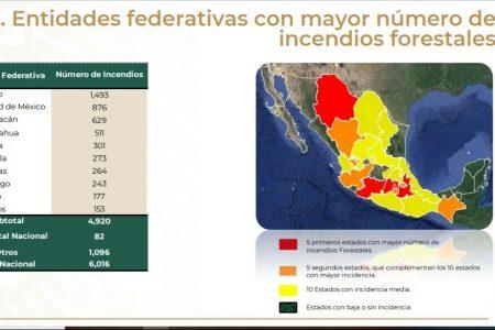 Suman 43 los incendios forestales en la Península de Yucatán: tres mil hectáreas afectadas