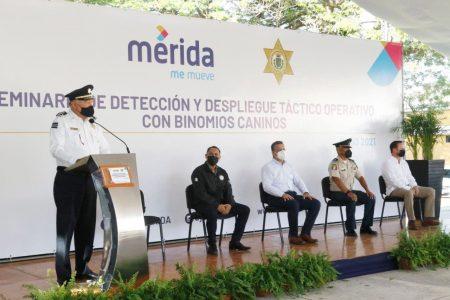 El Ayuntamiento mantiene la constante profesionalización de la Policía Municipal para mayor seguridad de la ciudadanía
