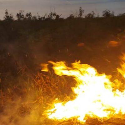 Con participación ciudadana, cerró sin novedades la temporada de incendios en Yucatán