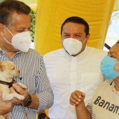 El cuidado y bienestar animal, responsabilidad compartida entre el Ayuntamiento y los ciudadanos
