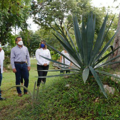 El Ayuntamiento fortalece alianzas para el trabajo conjunto a favor del medioambiente