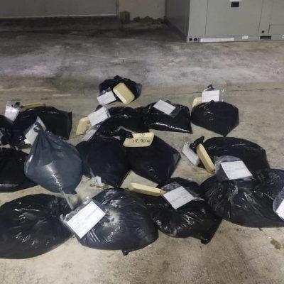 Detienen en Mérida a dos personas con 318 kilos de pulpo en veda