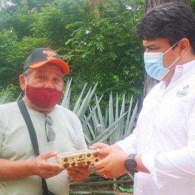 Gobierno de Mauricio Vila ya entregó cerca de ocho mil 500 abejas reina en apoyo a la apicultura yucateca