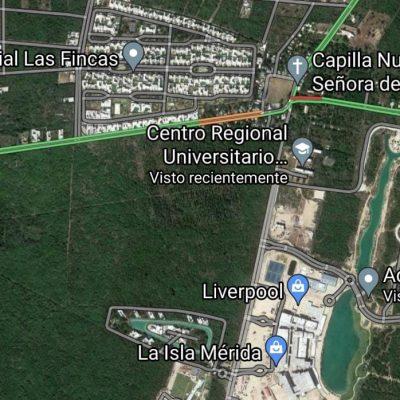 Las codiciadas 138 hectáreas de la Universidad de Chapingo, atrapadas por el crecimiento inmobiliario