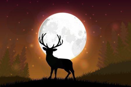 Este mes de julio podrás observar la luna llena del ciervo y hasta lluvia de estrellas