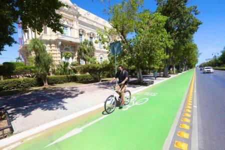 Impulso al transporte ecológico en Mérida y zona conurbada