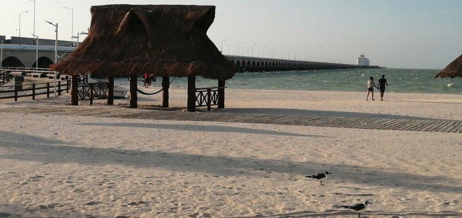 Yucatan Ahora