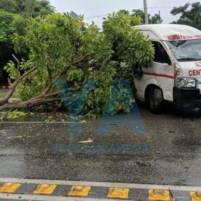 ¿Pasajera distracción? Taxi colectivo se monta en un camellón de Prolongación Montejo