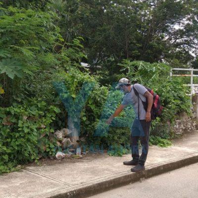 Abandonan a un bebé en la calle, en la colonia Emiliano Zapata Sur