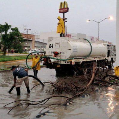 El Ayuntamiento atiende reportes ciudadanos y afectaciones por las lluvias