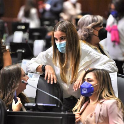 El PAN ratifica a Cecilia Patrón en la Comisión de Hacienda del Congreso
