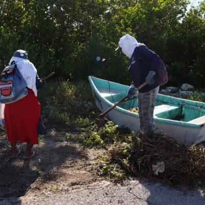 Realizan descacharrización y saneamiento en la Caleta de Progreso