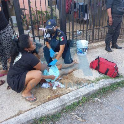Perro muerde a una abuela y su nieto en Ciudad Caucel