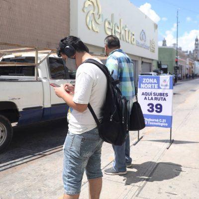 Desempleo y salud, la mayor preocupación de los yucatecos