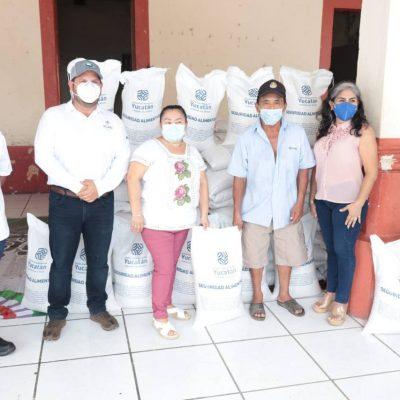 Continúa la distribución de frijol Jamapa y chile habanero a productores yucatecos