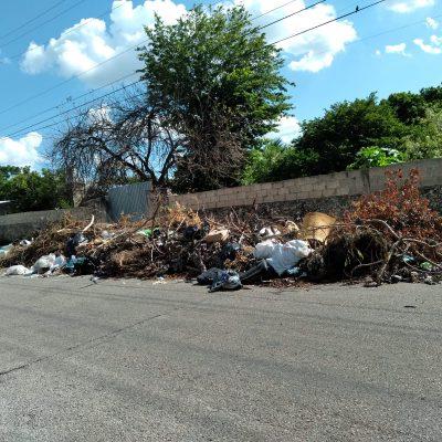 Basura acumulada desde el huracán Grace, en la colonia Francisco I. Madero